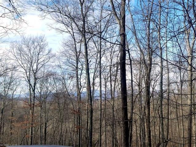 Photo for Lot #107 Boar Ridge Road, Sylva, NC 28779 (MLS # 3349343)