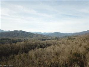 Tiny photo for 0 Browns Crossing #2, Marion, NC 28752 (MLS # 3348353)