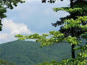 Photo of Lot 14 & 14A Blackberry Lane, Maggie Valley, NC 28751 (MLS # 3219382)