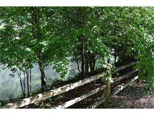 Tiny photo for 3319 Green River Cove Road #3 & 4, Saluda, NC 28773 (MLS # 3199407)