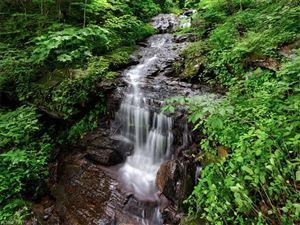 Tiny photo for 23 Dancing Bear Trail, Balsam, NC 28707 (MLS # 3325409)