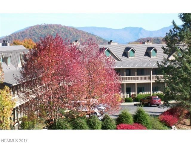 Photo for 2521 Wolf Laurel Road #105, Mars Hill, NC 28754 (MLS # 3326415)