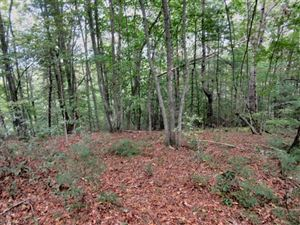 Photo of lot 4 Oxford Court, Brevard, NC 28712 (MLS # 3266416)