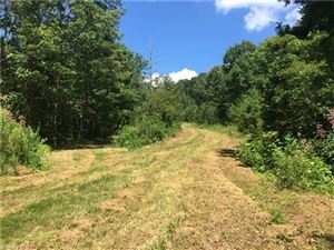 Photo of 9999 Faircrest Road, Asheville, NC 28804 (MLS # 3314421)