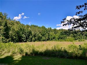 Tiny photo for 100 Mount Hope Drive, Pisgah Forest, NC 28768 (MLS # 3302432)