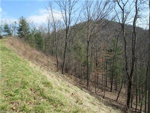 Tiny photo for 81 Starling Pass, Asheville, NC 28804 (MLS # 3169433)