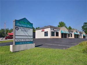 Tiny photo for 1303 E Seventh Avenue, Hendersonville, NC 28792 (MLS # NCM578434)