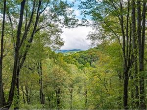 Tiny photo for 54 Sandy Lane, Mars Hill, NC 28754 (MLS # 3322444)