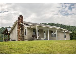 Photo of 171 Medford Branch Road, Candler, NC 28715 (MLS # 3299445)