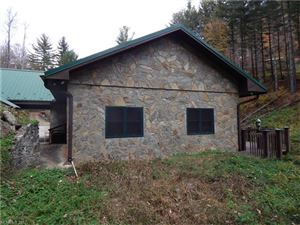 Tiny photo for 79 Ward Road, Maggie Valley, NC 28751 (MLS # 3335457)