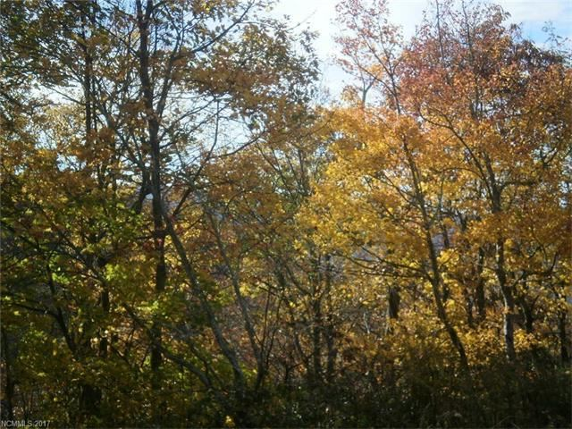 Photo for Lot 620 Waterford Drive #Lot 620, Maggie Valley, NC 28751 (MLS # 3321463)