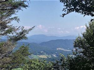 Photo of TBD Hutch Mountain Road, Fletcher, NC 28732 (MLS # 3311466)