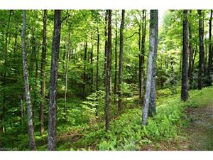 Tiny photo for 572 Indian Camp Mountain Road #17, Rosman, NC 28772 (MLS # 3298468)