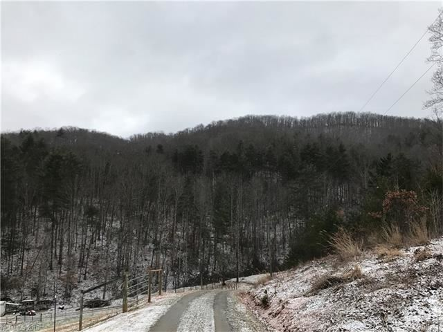 Photo for 99999 Old Stewart Road, Weaverville, NC 28787 (MLS # 3351476)