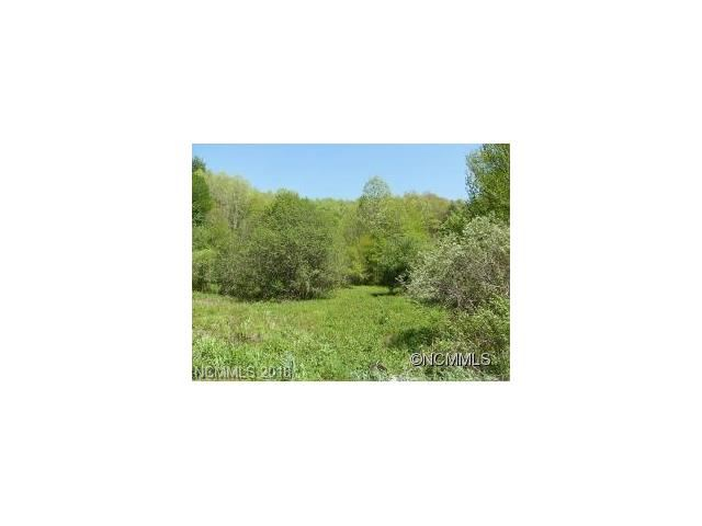Photo for 9999 Laurel Valley Road, Mars Hill, NC 28754 (MLS # 3351488)