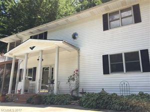 Photo of 843 North Fork Road, Barnardsville, NC 28709 (MLS # 3333490)