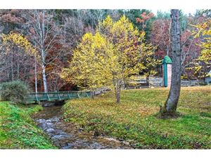 Tiny photo for TBD Ferncliff Court #1-R, Brevard, NC 28712 (MLS # 3340492)