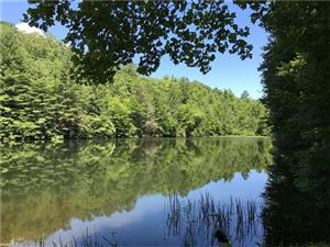 Tiny photo for 000 Chimney Creek Road, Brevard, NC 28712 (MLS # 3295499)