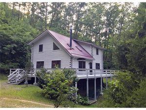 Photo of 172 Muszynski Drive, Canton, NC 28716 (MLS # 3198500)