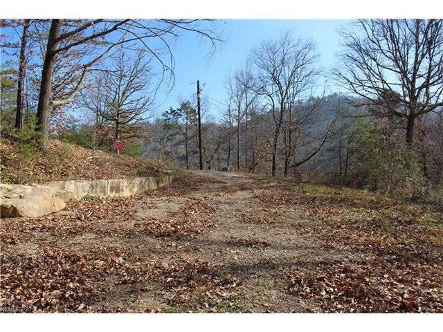 Photo for 194 Baird Cove Lane #2, Asheville, NC 28804 (MLS # 3342505)