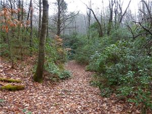 Photo of Tract 1 TBD 10+/- acres East Fork Road, Brevard, NC 28712 (MLS # 3346513)