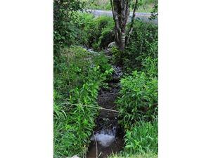 Tiny photo for 1863 Poplar Gap Road, Hot Springs, NC 28743 (MLS # 3278517)
