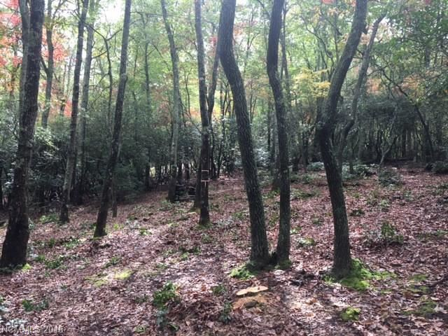 Photo for 425 Walnut Valley Parkway #Lot 96, Arden, NC 28704 (MLS # 3349523)