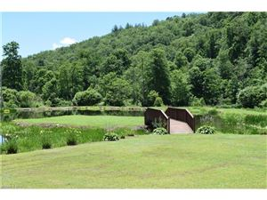 Tiny photo for 31 Trout Haven Lane, Balsam Grove, NC 28708 (MLS # 3295539)