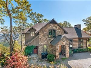 Tiny photo for 1616 White Oak Mountain Road, Columbus, NC 28722 (MLS # 3335556)