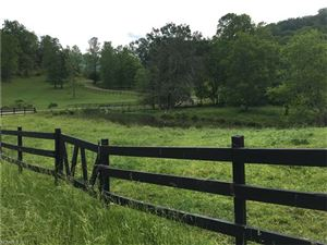 Tiny photo for 757 Burnette Cove Road, Canton, NC 28716 (MLS # 3301559)