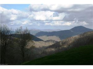 Tiny photo for 2521 # 102 Wolf Laurel Road, Mars Hill, NC 28754 (MLS # 3336568)