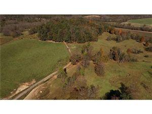 Tiny photo for 185 McKinney Road, Etowah, NC 28729 (MLS # 3125583)