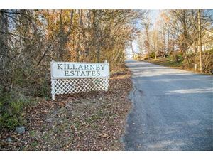 Tiny photo for 10 Derry Drive, Horse Shoe, NC 28742 (MLS # 3339589)