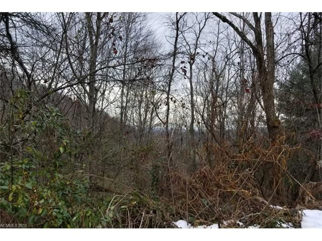 Photo for 999 Green Meadow Lane, Mars Hill, NC 28754 (MLS # 3348599)