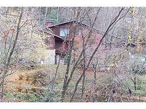 Photo of 884 Toxaway Drive, Hendersonville, NC 28791 (MLS # 3341600)