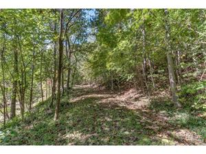Tiny photo for 3260 US Hwy 176 None #1, Tryon, NC 28782 (MLS # 3329602)