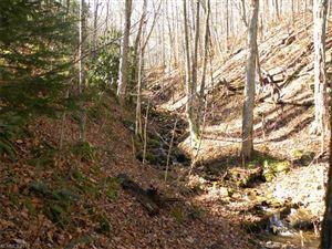 Tiny photo for 442 Ginseng Hollow Lane, Waynesville, NC 28786 (MLS # 3342629)