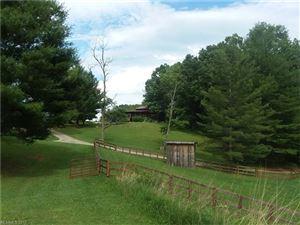 Photo of 280 Turkey Hollow Lane, Sparta, NC 28675 (MLS # 3264646)