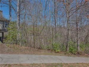 Photo of 117 Ruffed Grouse Lane, Waynesville, NC 28786 (MLS # 3158653)