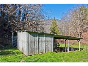 Tiny photo for 2016 Upper Paw Paw Road, Marshall, NC 28753 (MLS # 3336657)