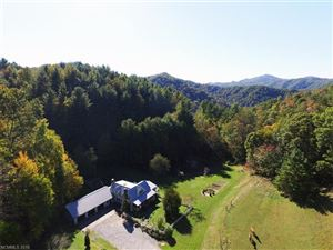Tiny photo for 500 Mountain View Road, Hot Springs, NC 28743 (MLS # 3348668)