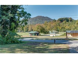 Tiny photo for 364 Harmon Field Road, Tryon, NC 28782 (MLS # 3334697)