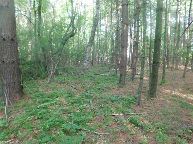 Photo for Lot 2 Pisgah Drive, Hendersonville, NC 28739 (MLS # 3282712)