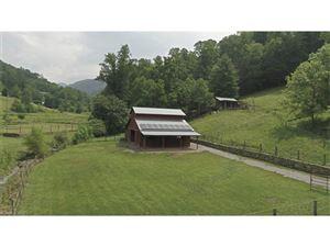 Tiny photo for 157 Poverty Branch Road, Barnardsville, NC 28709 (MLS # 3306713)