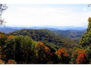 Tiny photo for 161 Mountainside Trail #17, Mars Hill, NC 28754 (MLS # 3338716)