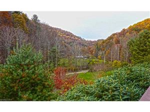 Tiny photo for 601 Indian Camp Creek Road, Hot Springs, NC 28743 (MLS # 3314722)