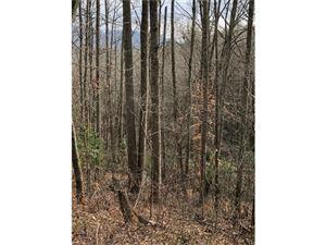 Tiny photo for TBD Abbey Lane #30, Hendersonville, NC 28792 (MLS # 3350723)