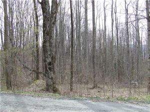 Photo of 32 katie Lane #32, Bakersville, NC 28705 (MLS # 3351735)