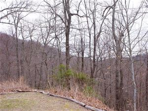 Photo of 109 Ladys Fern Trail #12, Laurel Park, NC 28739 (MLS # 3264736)