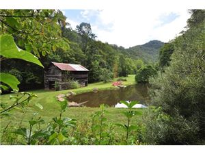 Tiny photo for 70 Rock House Road, Hot Springs, NC 28743 (MLS # 3303739)